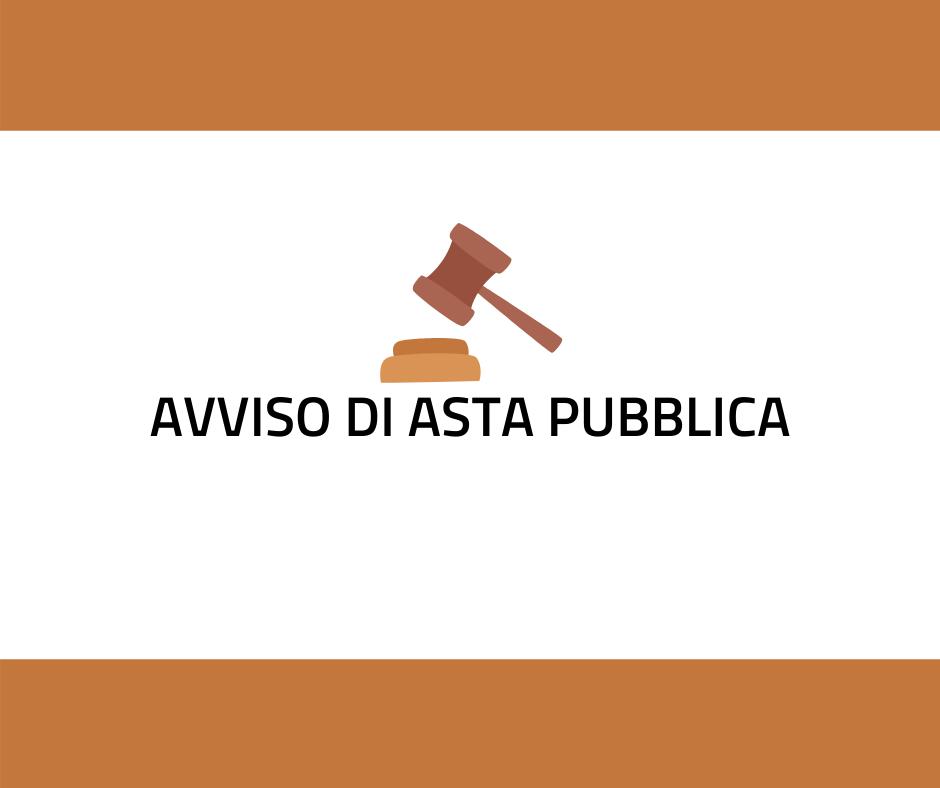"""AVVISO D'ASTA PUBBLICA PER LA CONCESSIONE DI TERRENI DI PROPRIETA' COMUNALE IN LOCALITA' """"VALLE"""" PER L'ATTIVITA' LUDICO SPORTIVA DI """"SOFT AIR"""""""